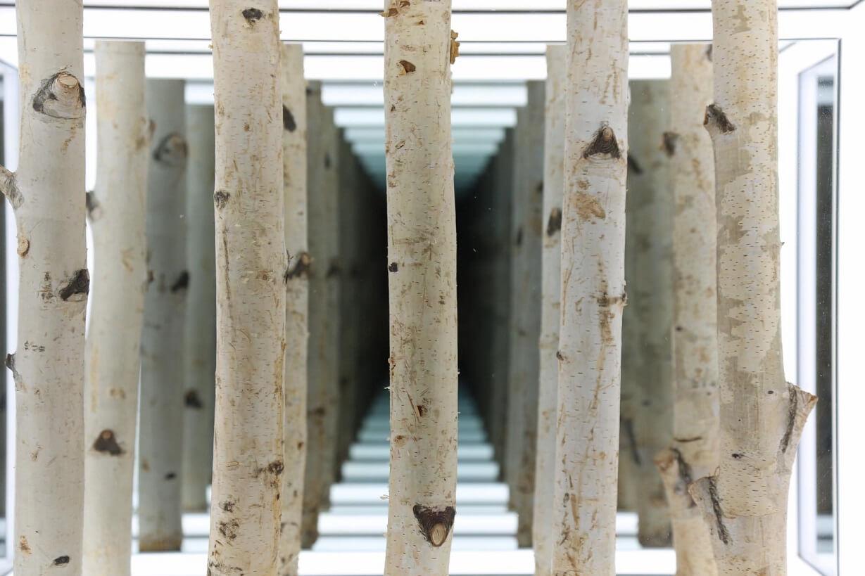 打造在地與國際藝術交流的平台:大苑藝術會展公司以特色型藝博會,呈現不同脈絡的當代視野